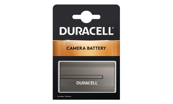 HDR-FX7 Battery (2 Cells)